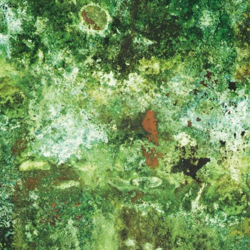 Papier peint Vert De Gris - Jean Paul Gaultier