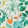 Hibiscus wallpaper - Nobilis