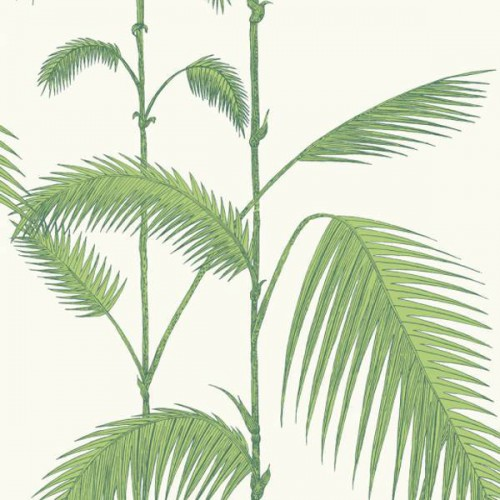 Palm Leaves wallpaper - Cole and Son