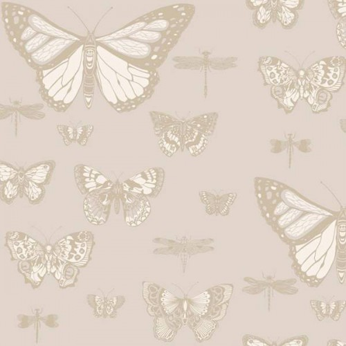 Butterflies & Dragonflies wallpaper -  Cole and Son