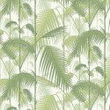 Papier peint Palm Jungle de Cole and Son coloris Olive/Blanc 95-1001