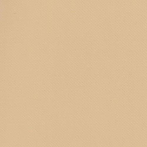 Bâche PVC pour toile à taud et autres usages TAIGA largeur 250 cm