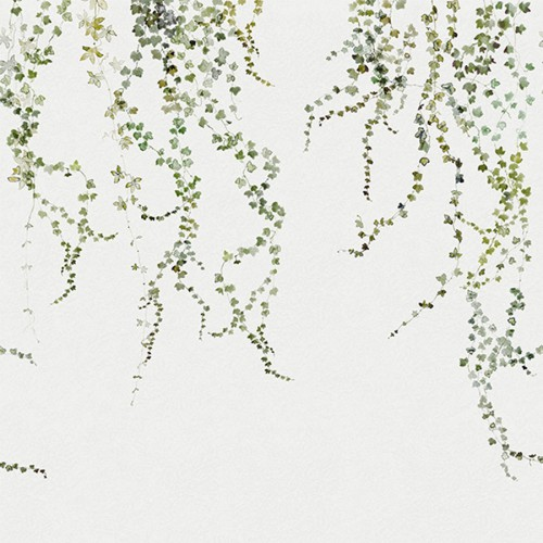 Aralia wallpaper - Sandberg color green grey / white 640-04