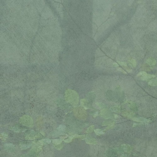 Skog wallpaper - Sandberg color mist 622-08