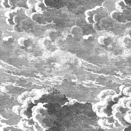 Panneau mural Nuvole - Cole and Son coloris black / white 114/28054