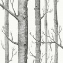 Woods fabric -  Cole and Son color Black on white-F111-7026LU