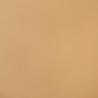 Simili Cuir Sunbrella Horizon coloris Toast-10200-0007