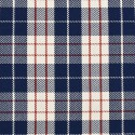 Tissu indoor outdoor Dedar Plaid - Bleu