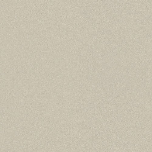 Soft touch coated fabric City - Beige