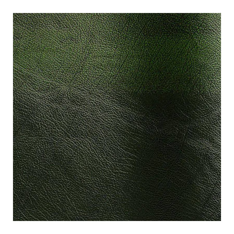 Bovine leather pigmented Rub-off vert color