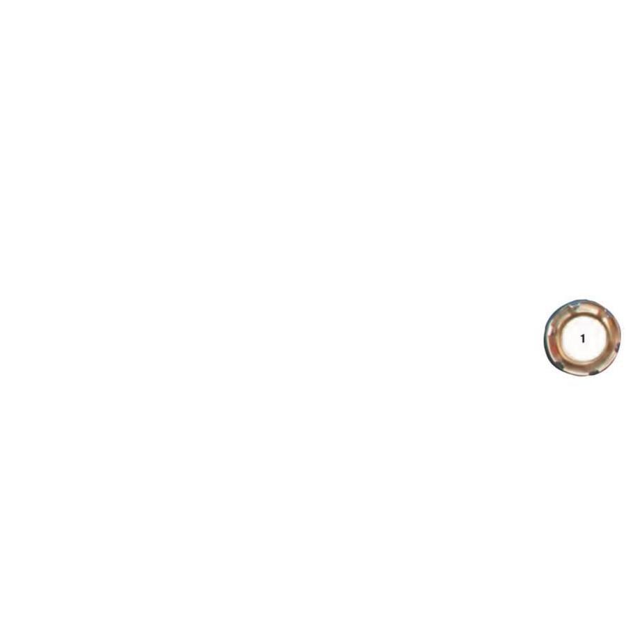 Œillet à dents rond laiton nickelé diamètre intérieur 12 mm