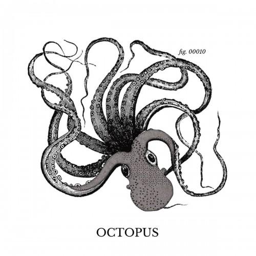 Alcantara Octopus ® fabric