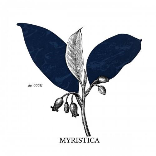 Tissu Alcantara ® Myristica référence Myristica