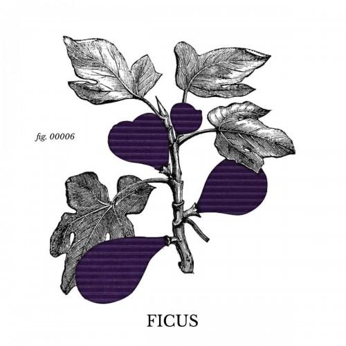 Tissu Alcantara ® Ficus référence Ficus