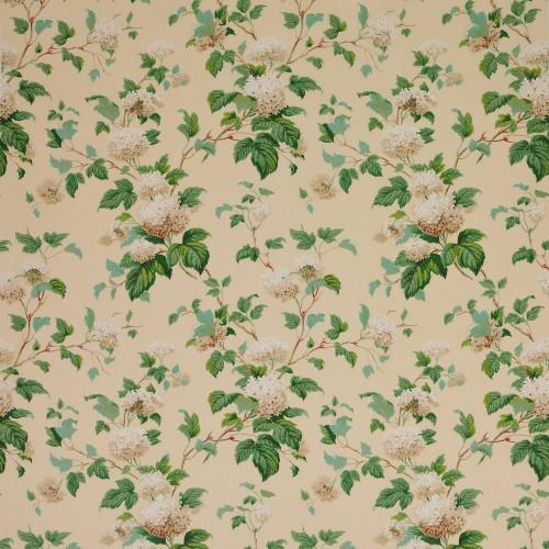 Tissu Chantilly de Colefax and Fowler coloris Cream F1114-02