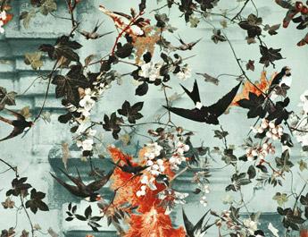 Papier peint Hirondelle - Jean Paul Gaultier