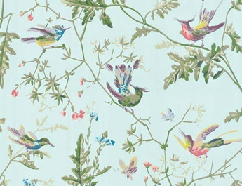Papier peint Humming Birds - Cole and Son