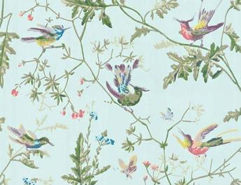 Papier peint Humming Birds - Cole and Son