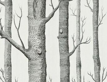 Papier peint Woods - Cole and Son